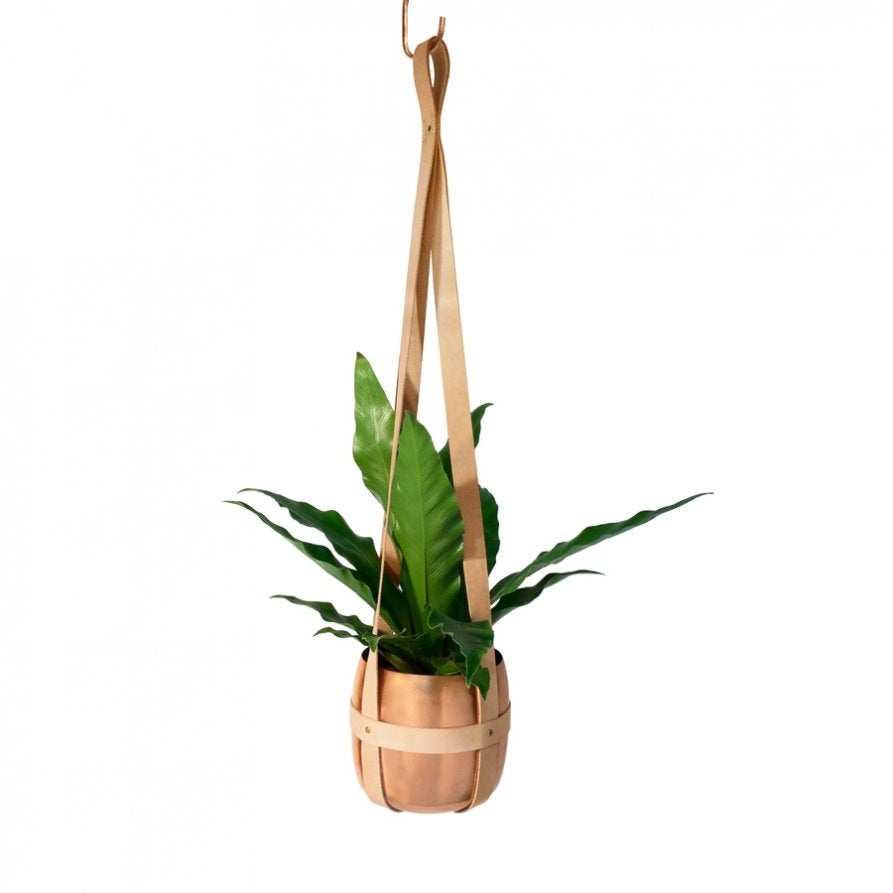 Image of Leather planter
