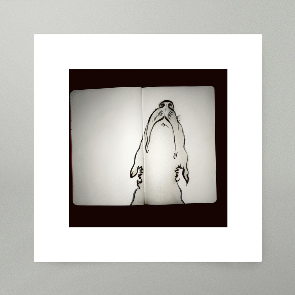 Image of By Hand : Snout Art Print