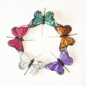 Image of Medium Butterfly Hair Grips