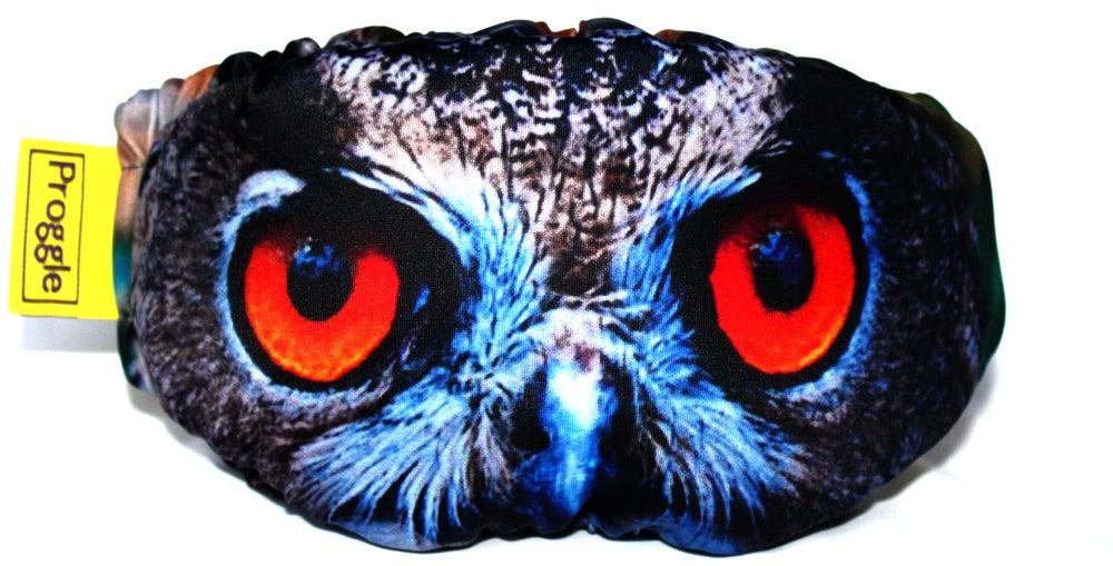 Image of The Eagle Owl