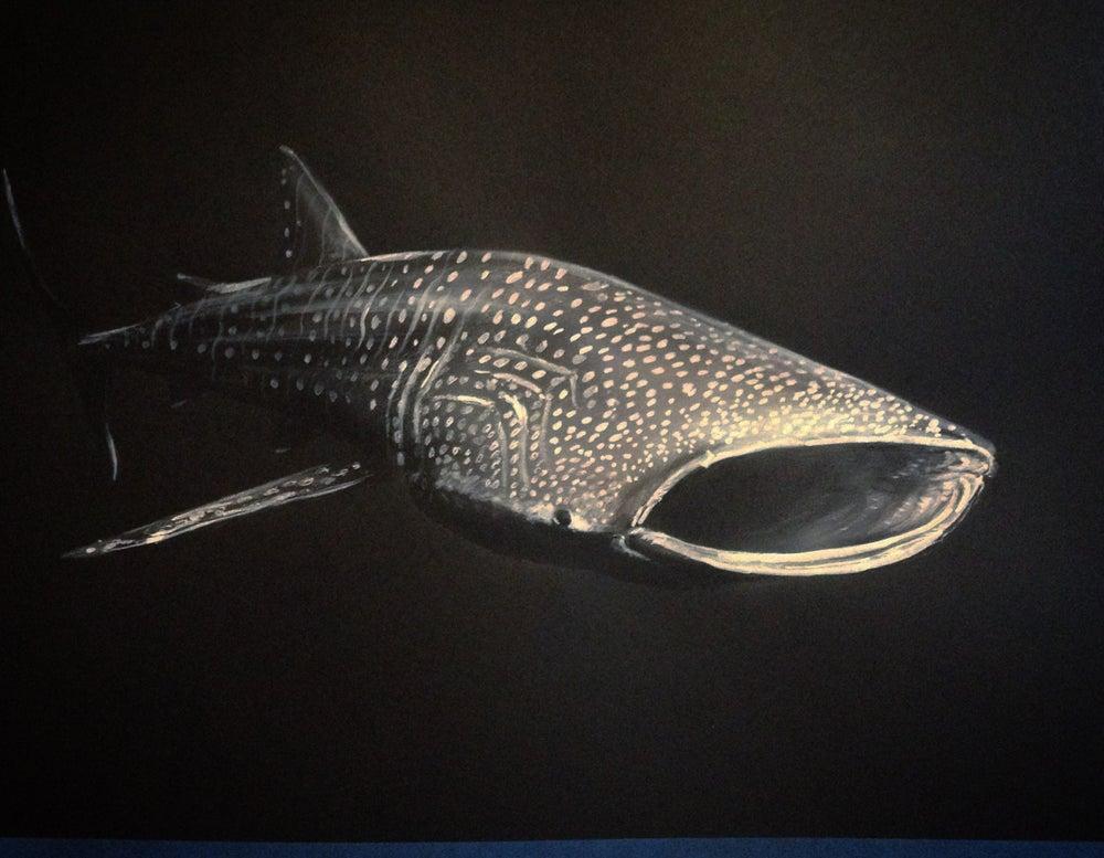Image of whale shark greyscale