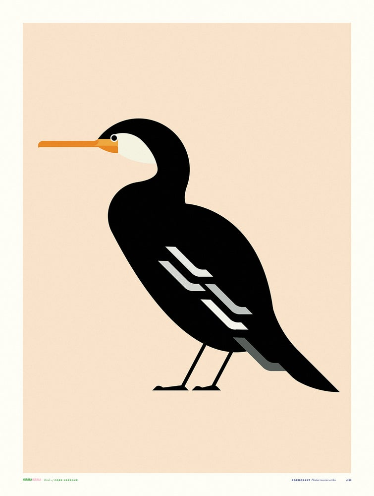 Image of Cormorant / Cork Harbour Bird Series