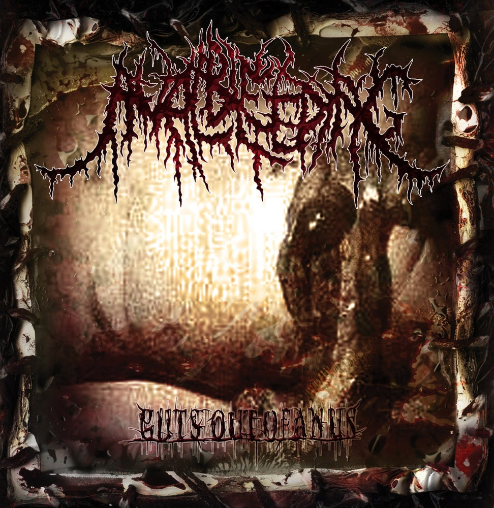 Image of Anal Bleeding - Guts Out Of Anus - Re-Release - CD