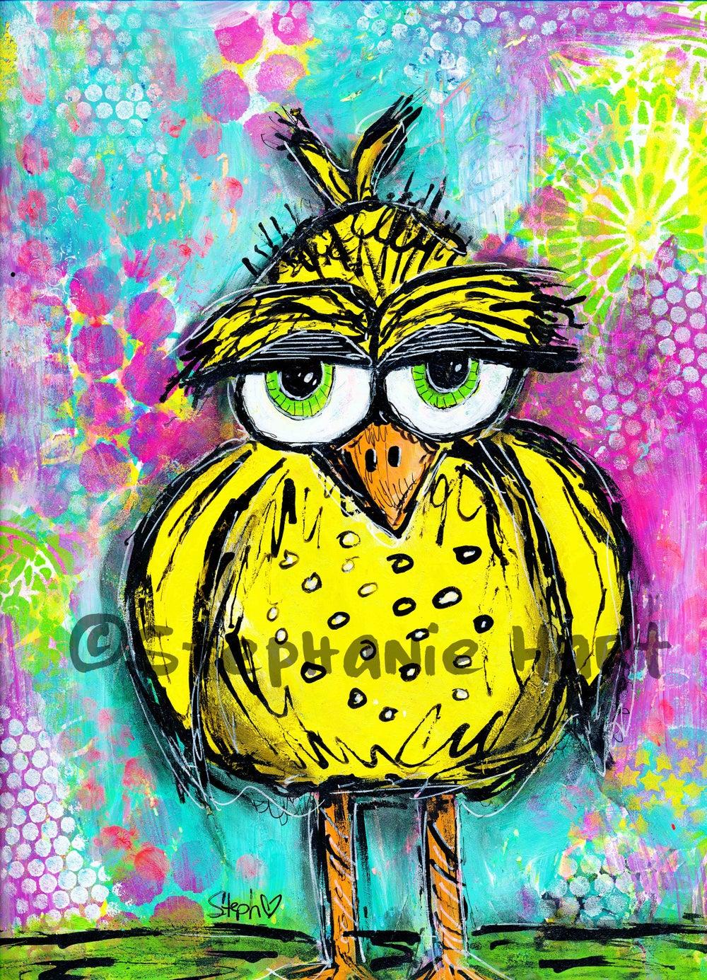 Image of Funky Grumpy Bird