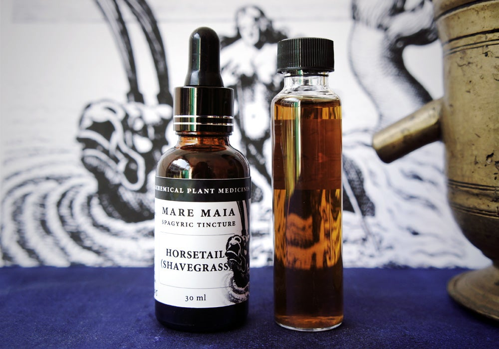 Image of HORSETAIL (SHAVEGRASS) spagyric tincture - alchemically enhanced plant extraction
