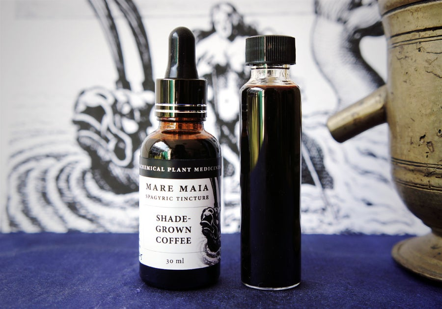 Image of COFFEE spagyric tincture - alchemically enhanced plant extraction