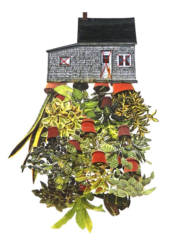 """Image of Print of """"Room Plant"""""""