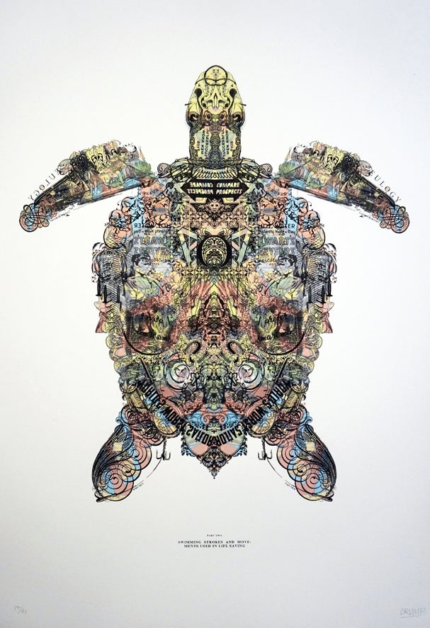 Image of TURTLE POWER