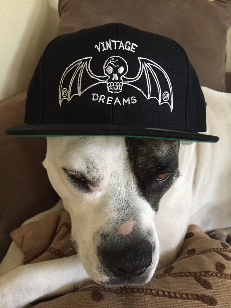 Image of Vintage dreams cracked batskull SnapBack.