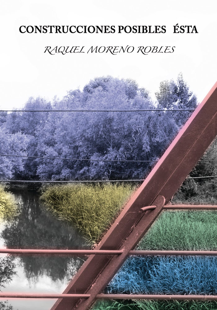 Image of Construcciones posibles ésta - Raquel Moreno Robles