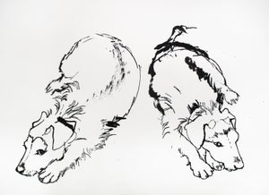 Image of Double dog