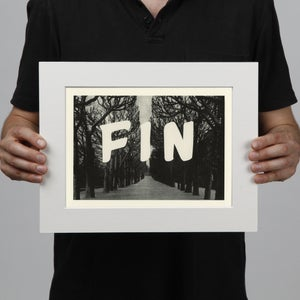 Image of Fin
