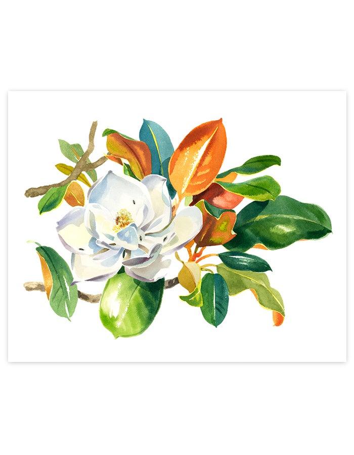 Image of Magnolia Grandiflora Giclée Art Print #2
