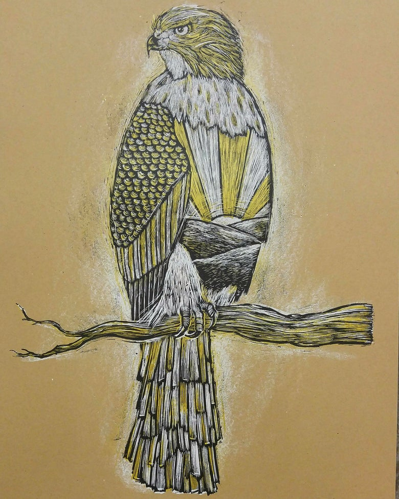 Image of Cooper's Hawk at Sunrise Kraft Brown edition