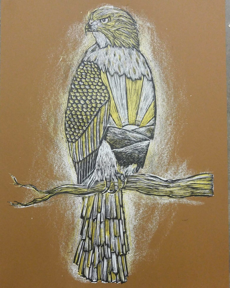 Image of Cooper's Hawk At Sunrise Brown Colorway