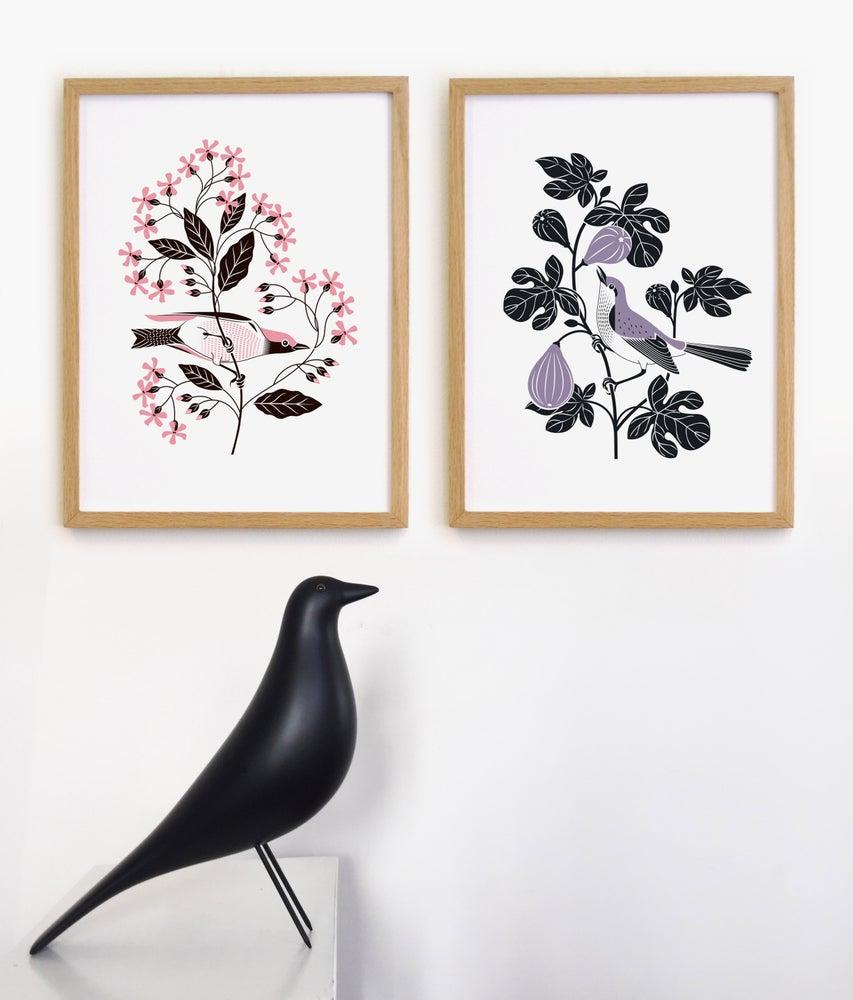 Image of Les oiseaux