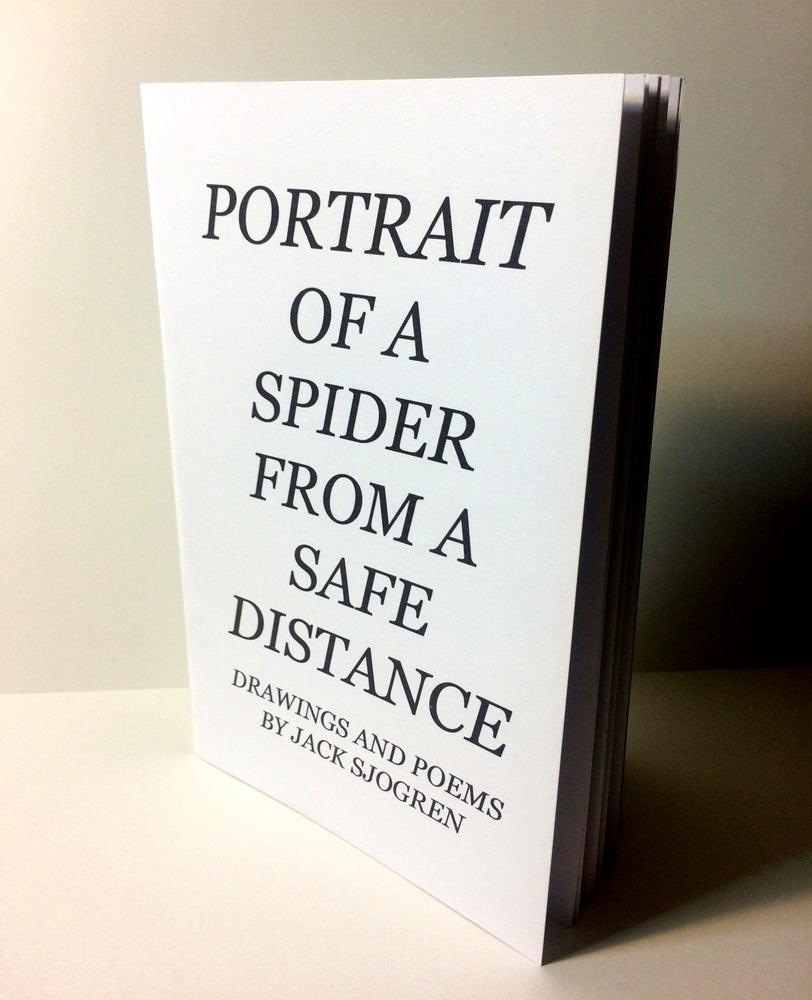 Image of Portrait of a Spider from a Safe Distance