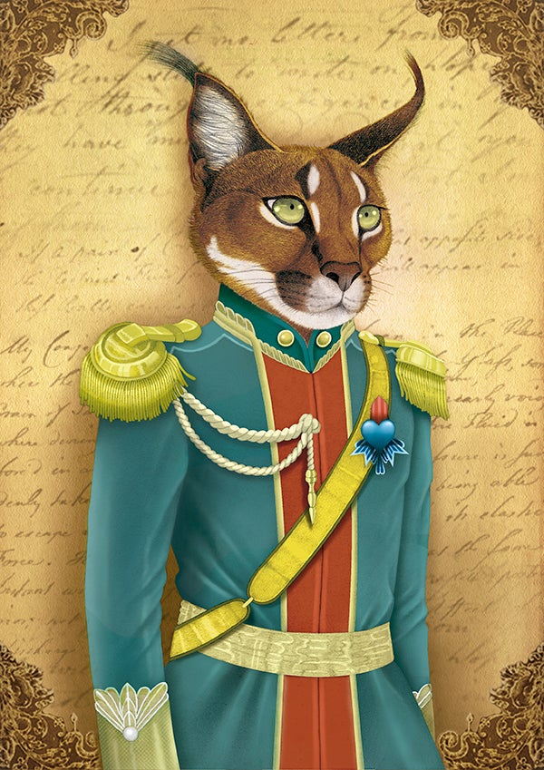 Image of Archibald the caracal