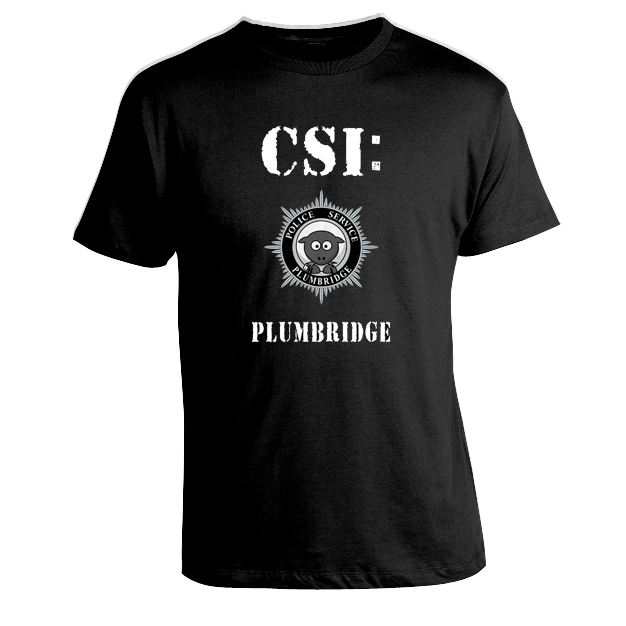 Image of CSI Plumbridge