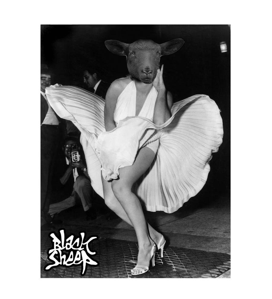 Image of MONROE x BLACK SHEEP T-SHIRT