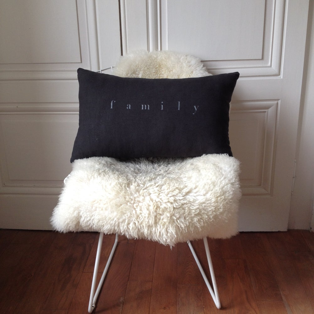 Image of Coussin carbone family argent long