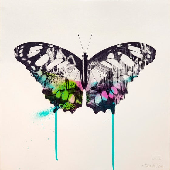 Image of Graffiti Butterfly