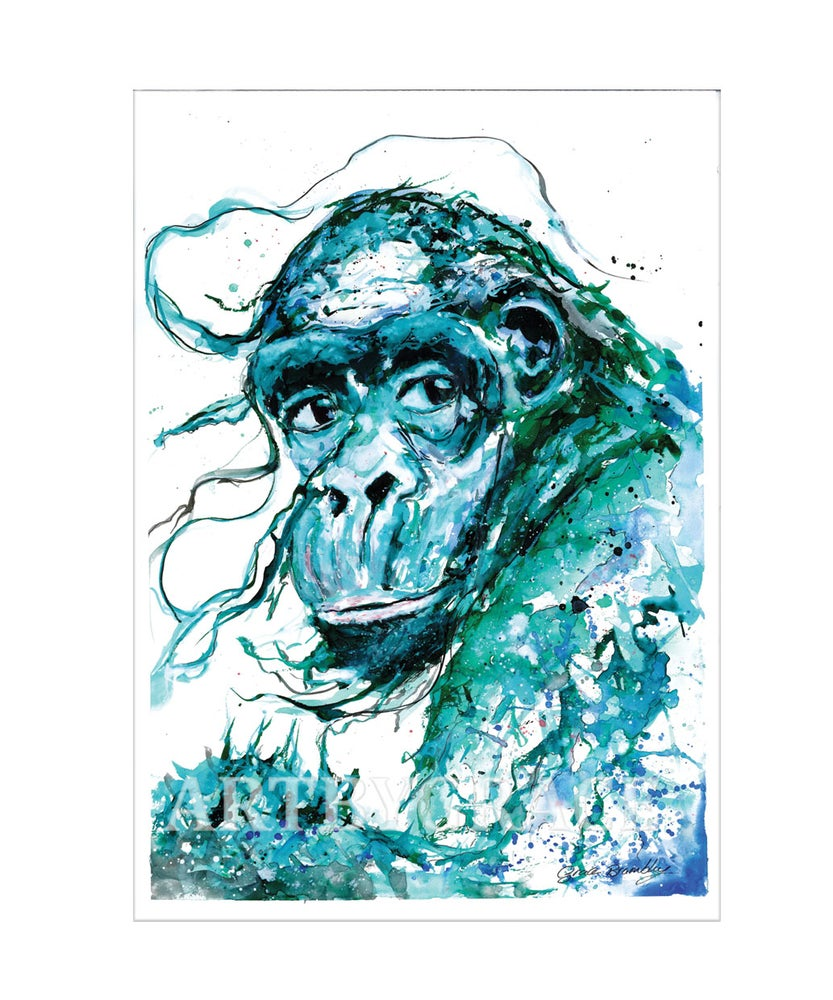 Image of Wise Chimpanzee