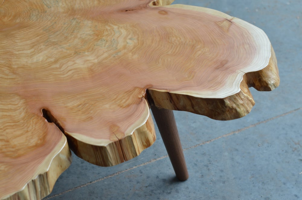 Image of butterfly coffee table