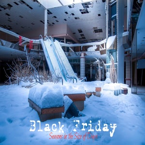 Image of Black Friday-Seasons in the Size of Days (eBook)