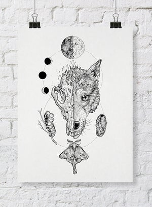 Image of Werewolf: Cocoon // the eternal ecliptic ritual