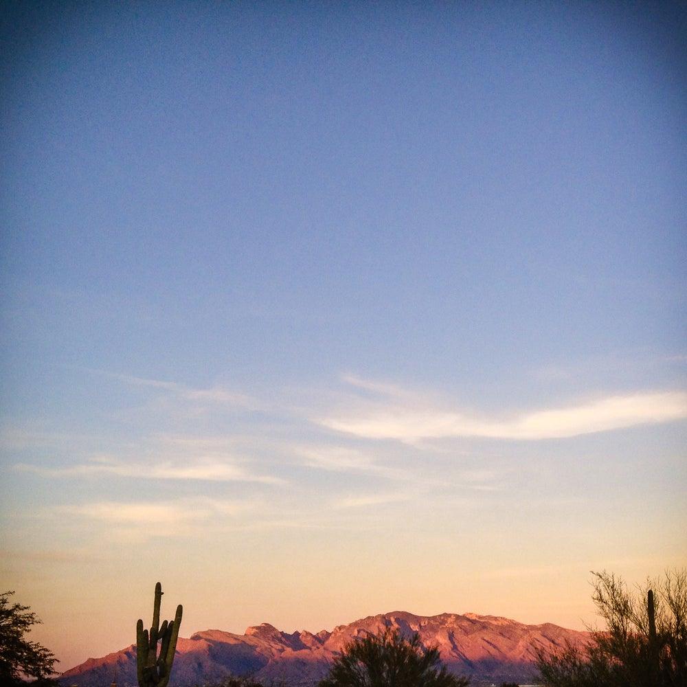 Image of Pink Saguaro