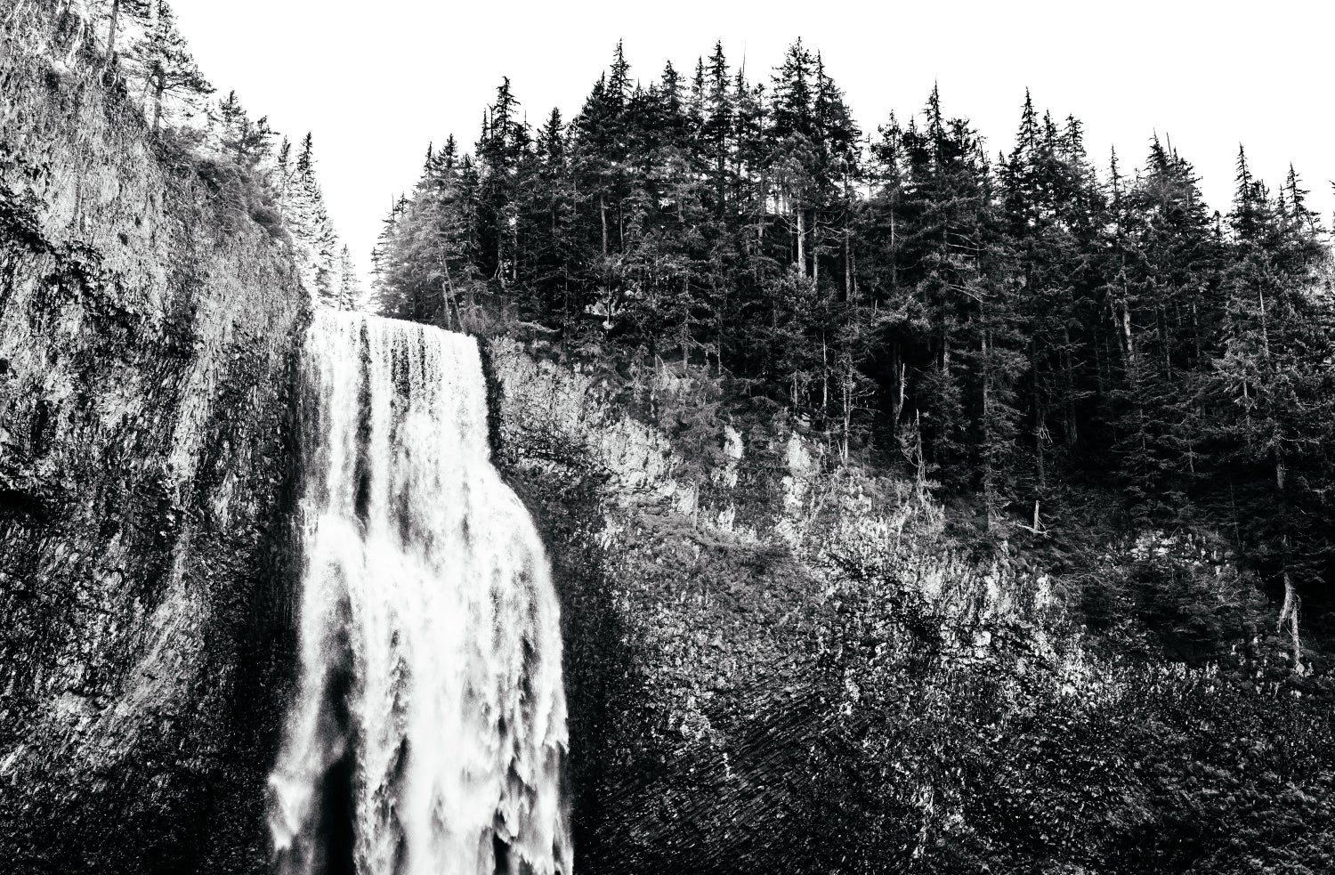 Image of Salt Creek Falls