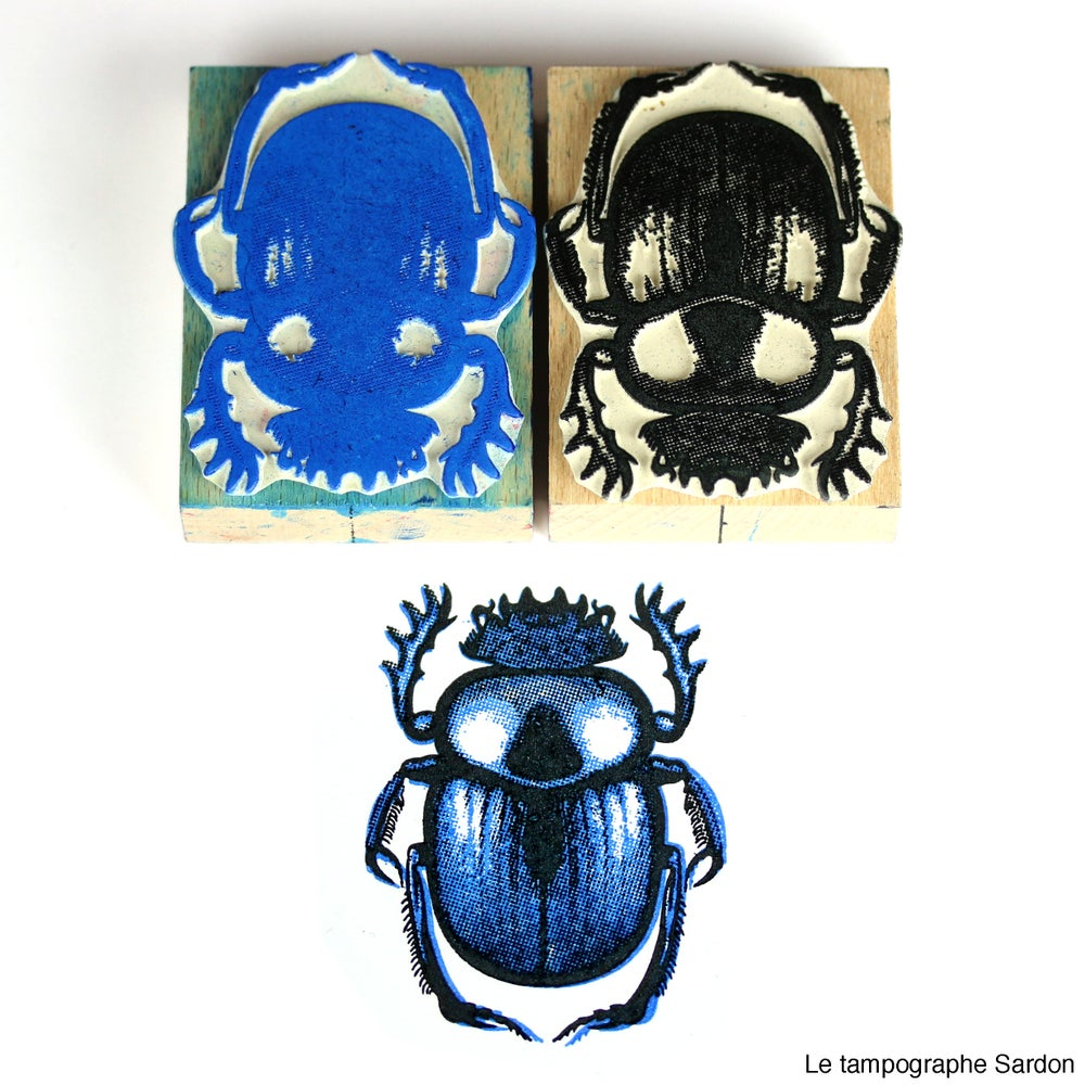 Image of Scarabée sacré - Sacred beetle.
