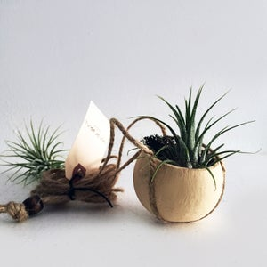 Image of HANGING BELL POD PLANTER