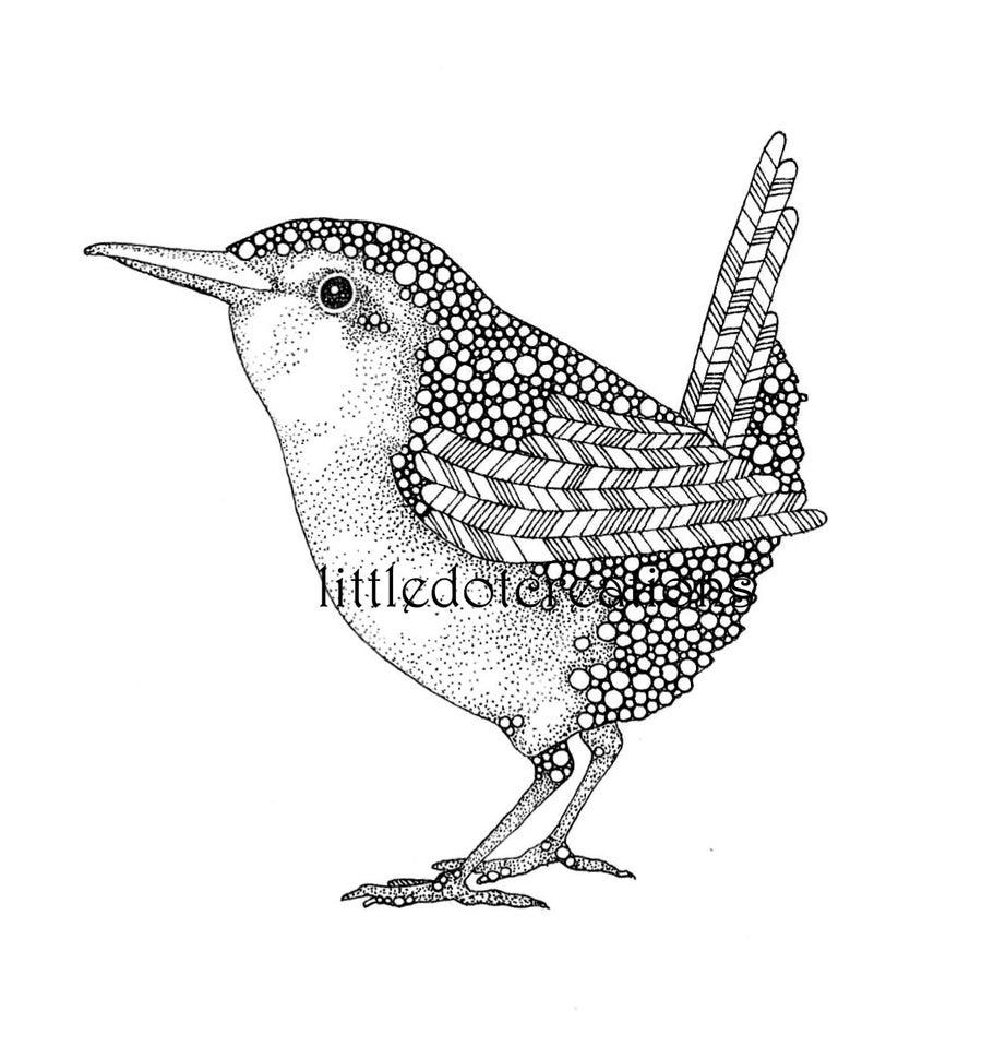 Image of 7am Birdsong
