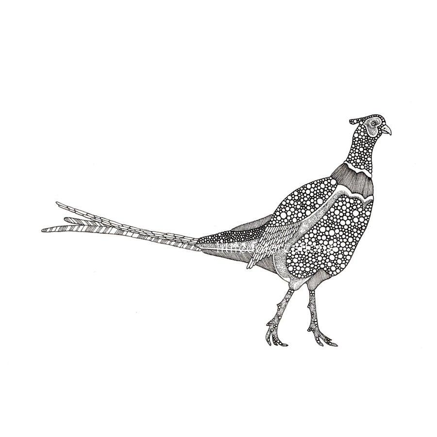 Image of The Pleasantries of Pheasants