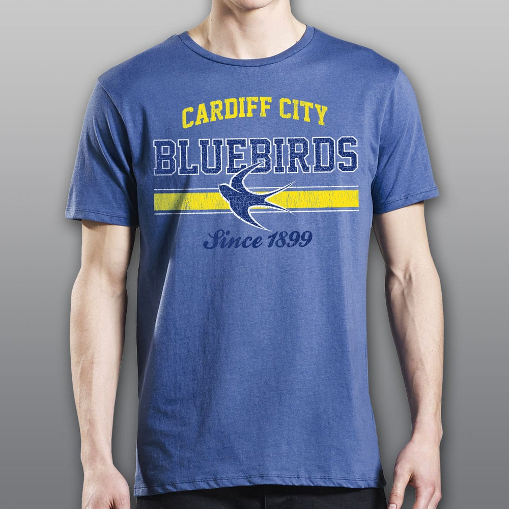 "Image of Faded Denim ""Bluebirds"" Men's T-Shirt"