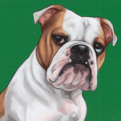 Image of 1 PET / PAINTING