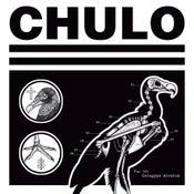 """Image of CHULO Coragyps Atratus 12"""""""