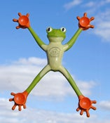 Image of Po-Po the Frog