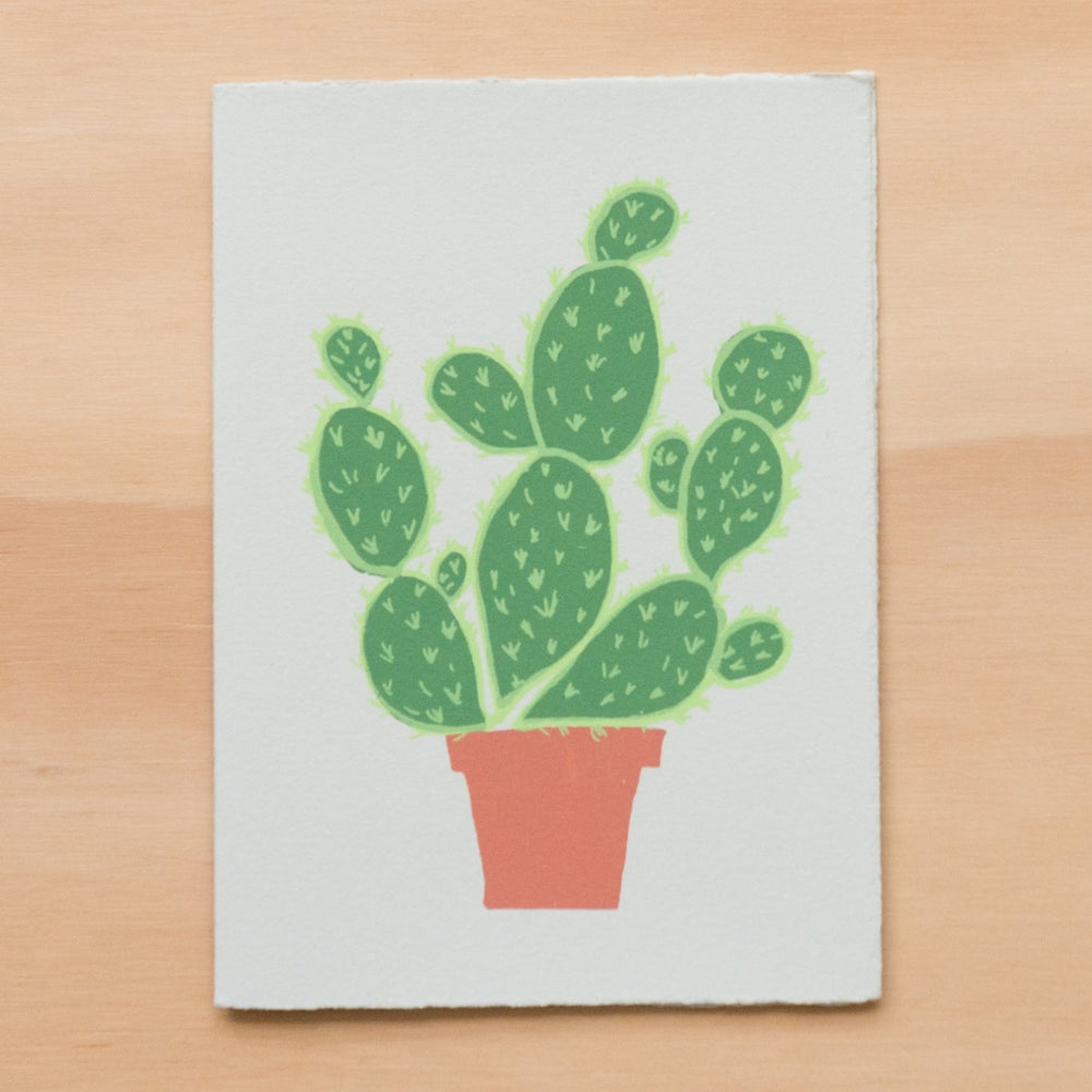 Image of Potted Cactus