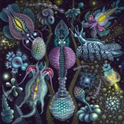 Image of MICROVERSE II ~ Signed Open Edition Print