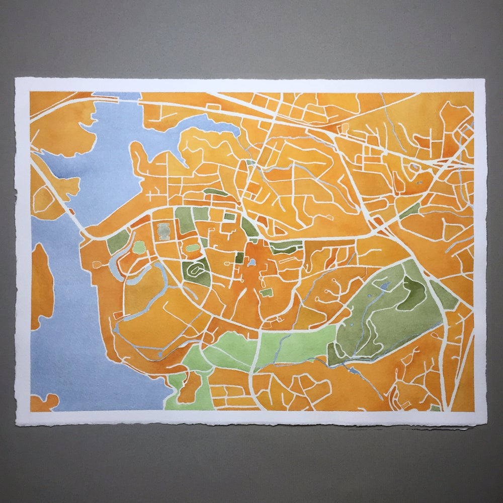 Image of CLEMSON MAP UNFRAMED - PRE-ORDER
