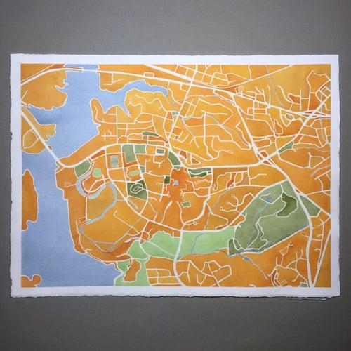 Image of CLEMSON MAP FRAMED - PRE-ORDER