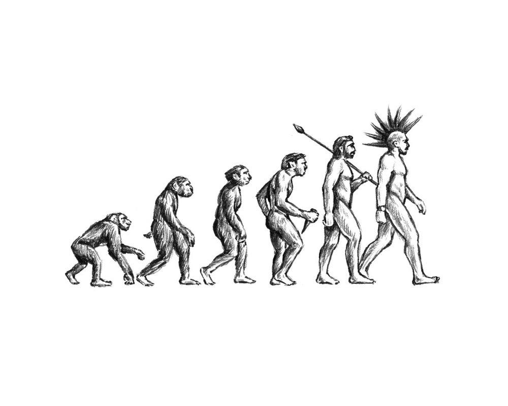 Image of Evolution