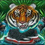 Image of Tiger jordan 11