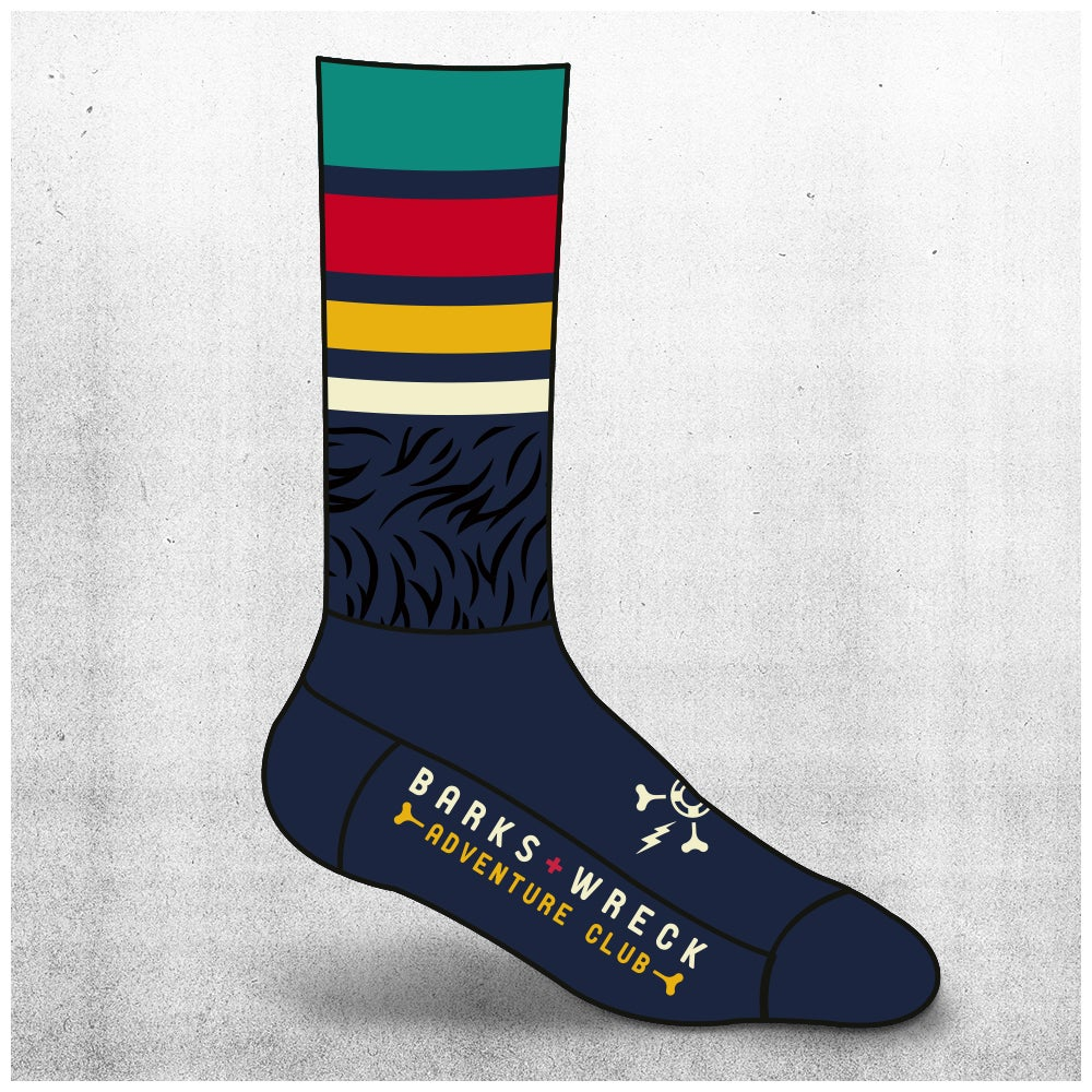 Image of ADVENTURE CLUB Socks: NAVY