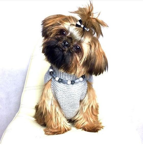 Image of Arabella, Grey ~ Grey, Pewter & White striped Ribbon Tie Beaded Dog-Necklace