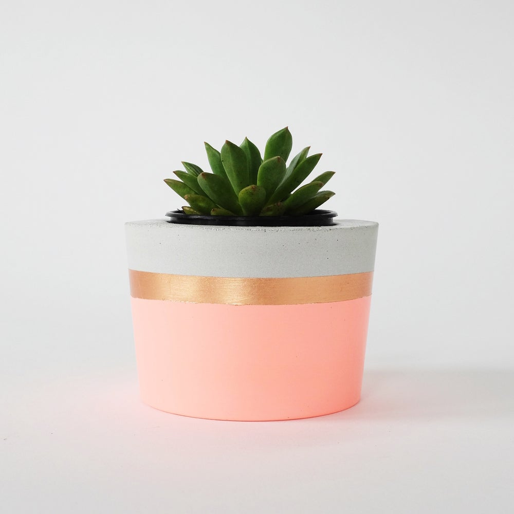 Image of Planter - Fluro Peach & Copper