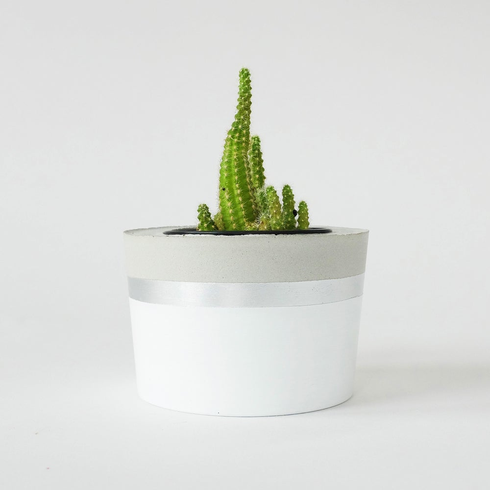 Image of Planter - White & Silver